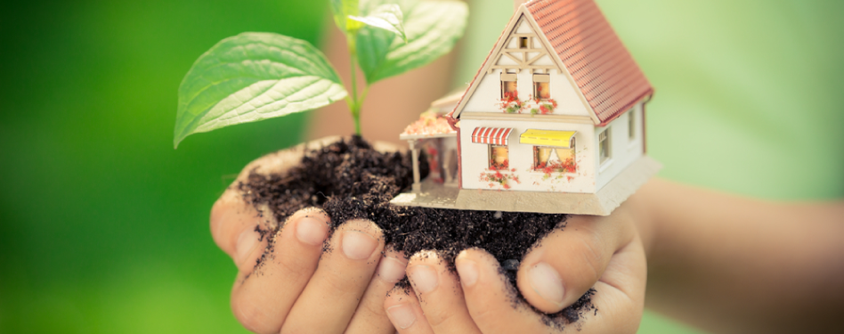 4 green renovation ideas to boost your home's value - There are many reasons to make your home more energy-efficient. Besi...