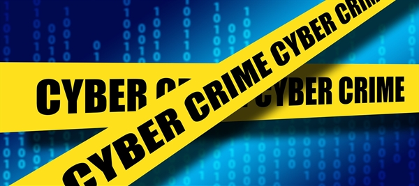 What Should You Do After a Data Breach?